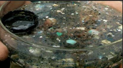 Суп из микропластика Большое тихоокеанское мусорное пятно