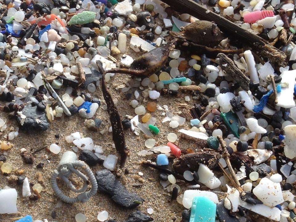 LEGO вымывается на берег Большое тихоокеанское мусорное пятно